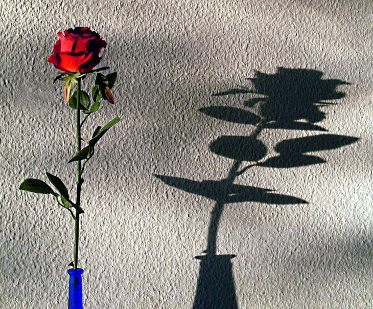 Photography of Shadow 11 Beautiful shadow photography
