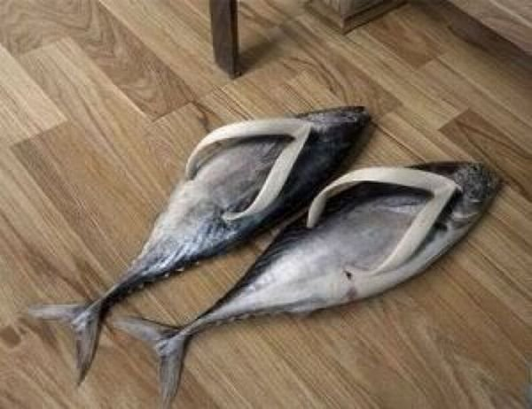 funny slippers