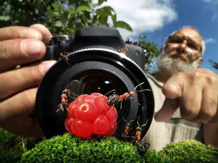 """micro photography"""