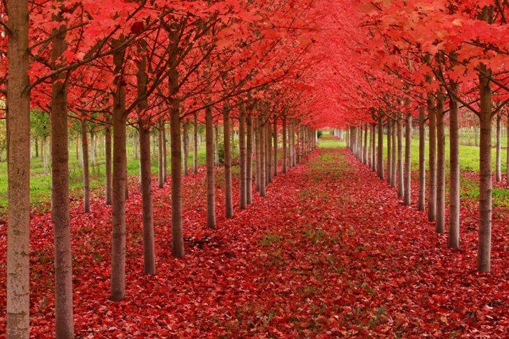 25 Stunning Landscapes (1)