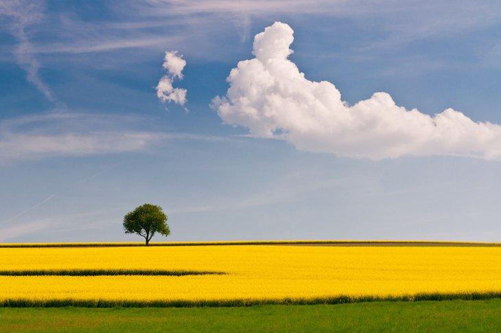 25 Stunning Landscapes (25)