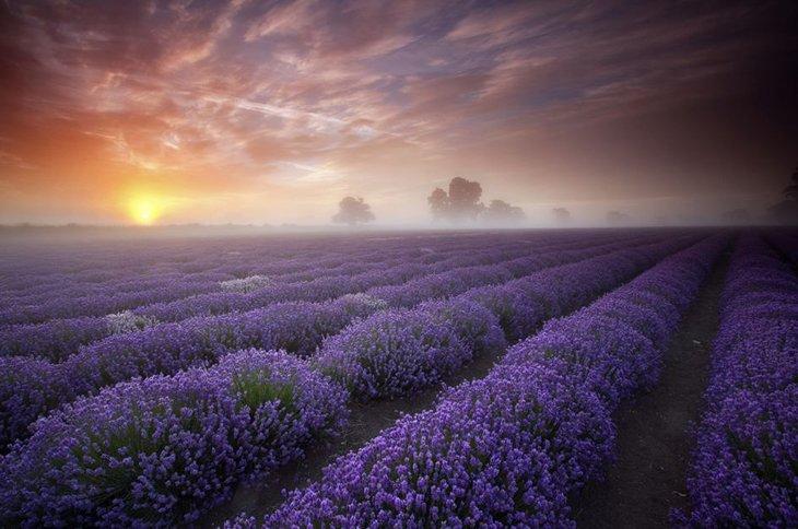 25 Stunning Landscapes (14)