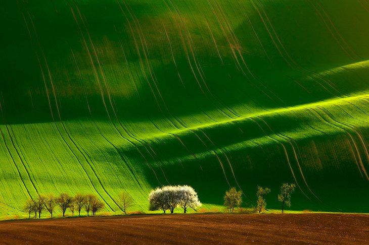25 Stunning Landscapes (7)