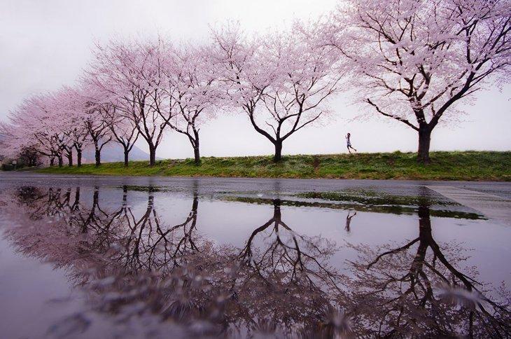 25 Stunning Landscapes (5)
