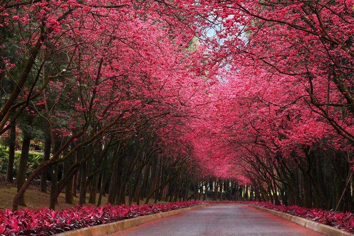 25 Stunning Landscapes (21)