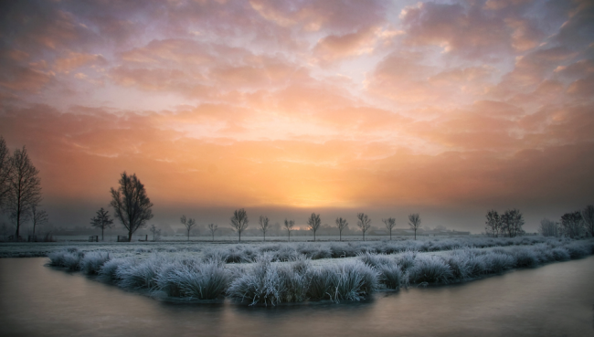 Winter Photographs (21)