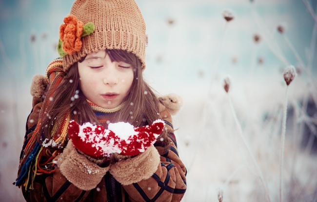 Winter Photographs (9)