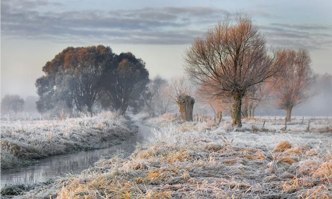 Winter Photographs (10)