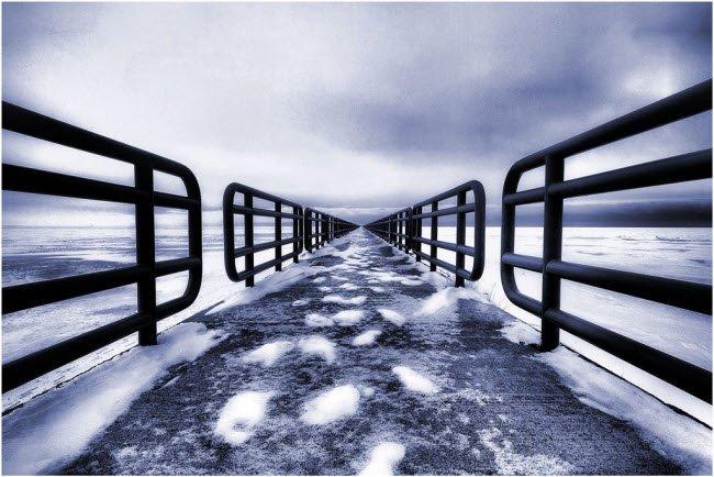 Winter Photographs (6)