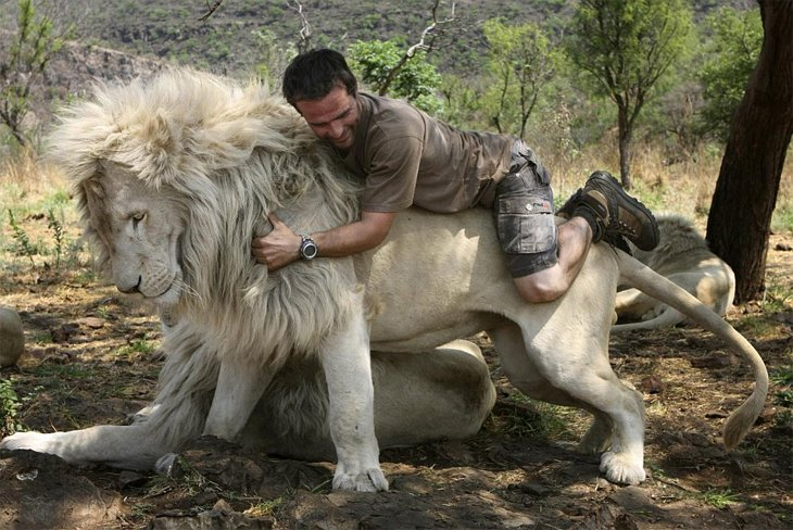 Kevin Richardson, The Lion Whisperer  (31)