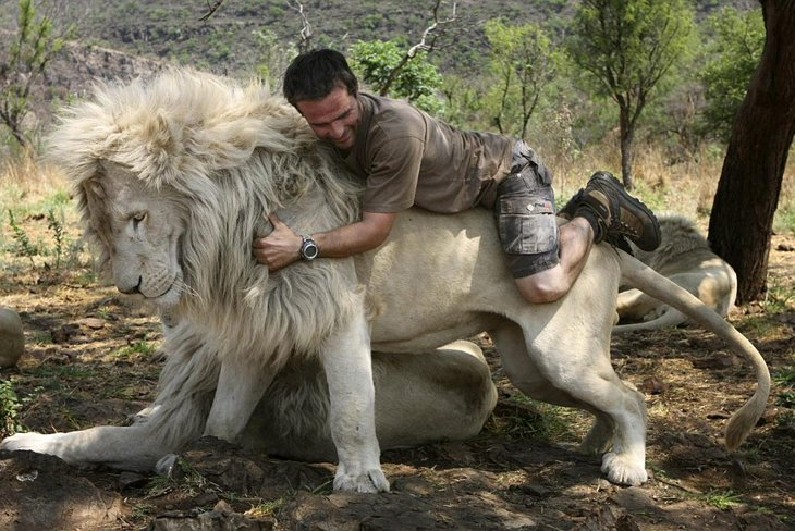 Kevin Richardson, The Lion Whisperer  (30)