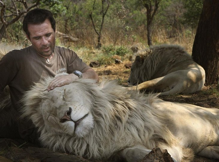Kevin Richardson, The Lion Whisperer  (29)