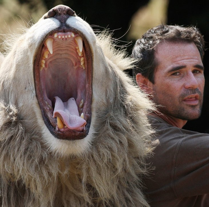 Kevin Richardson, The Lion Whisperer  (25)