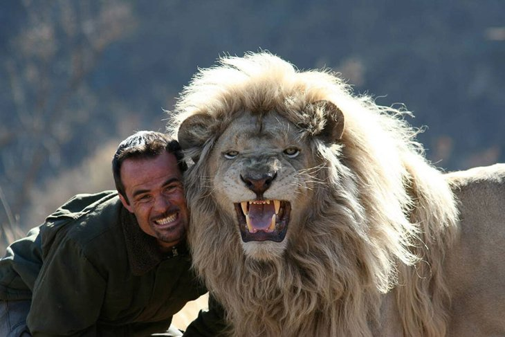 Kevin Richardson, The Lion Whisperer  (11)