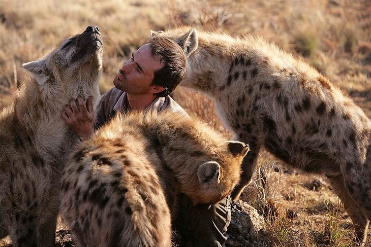 Kevin Richardson, The Lion Whisperer  (10)