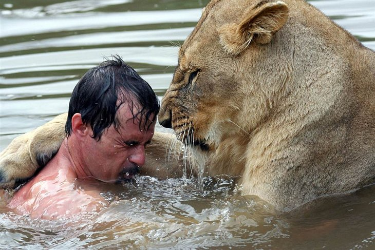 Kevin Richardson, The Lion Whisperer  (9)