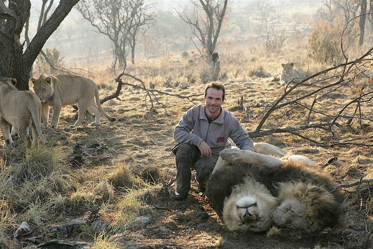 Kevin Richardson, The Lion Whisperer  (7)
