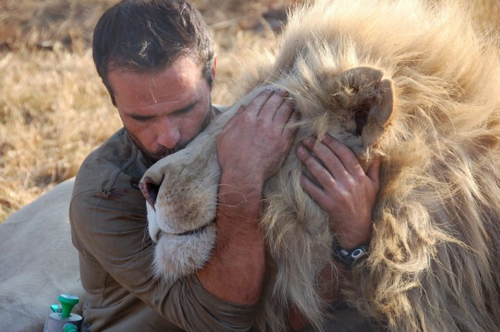 Kevin Richardson, The Lion Whisperer  (4)