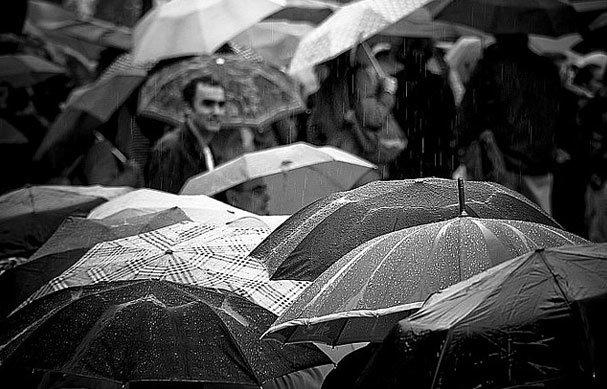 Interesting Atmospheric in Rain photos (10)