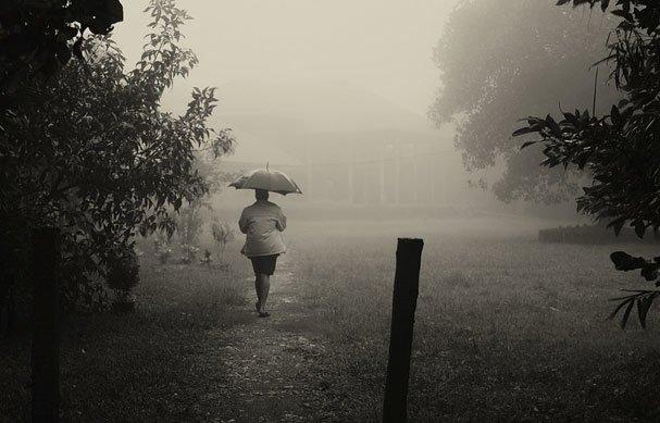 Interesting Atmospheric in Rain photos (21)