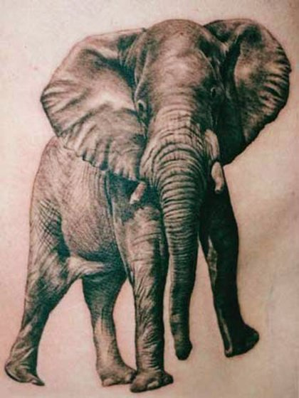 35 Elephant Tattoo Designs (2)