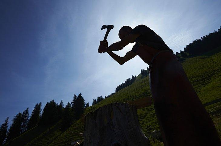 Make Swiss cheesemakers (17)