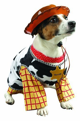 Beautiful Halloween Pet Costumes (2)