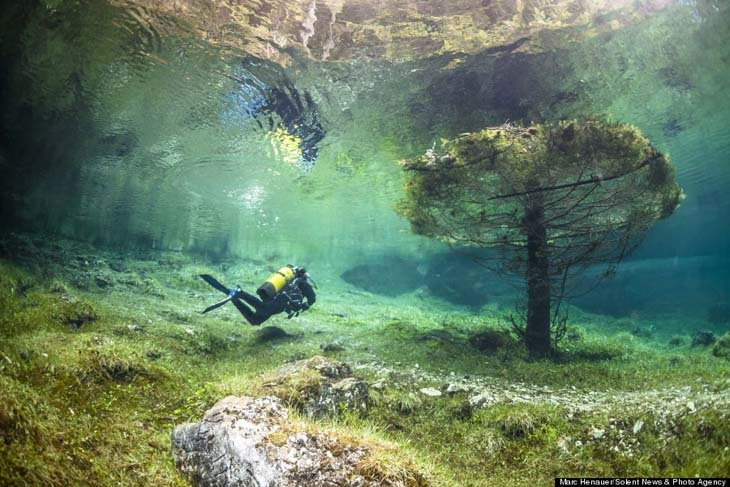 Austria's spectacular underwater world (9)