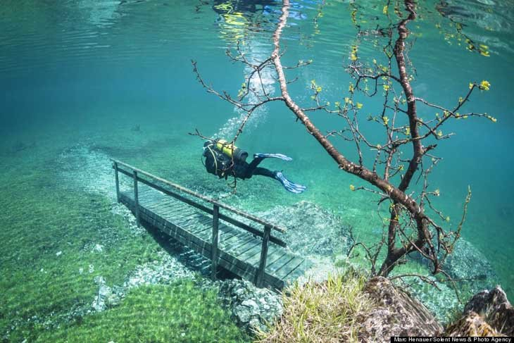 Austria's spectacular underwater world (6)