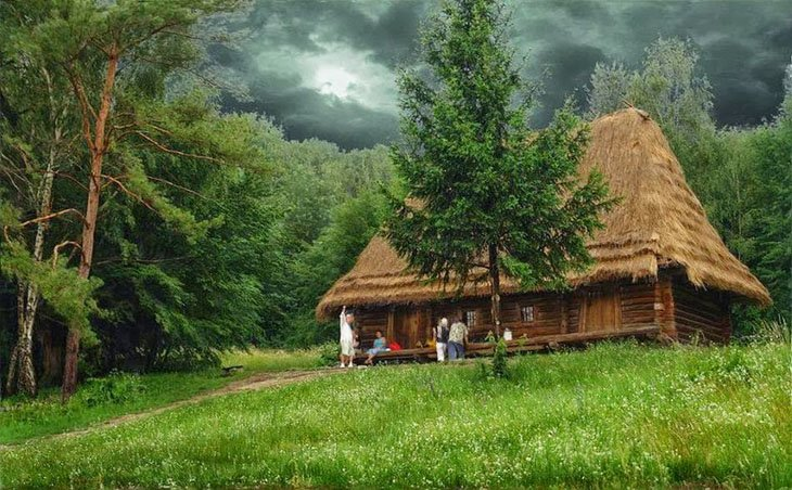 Clean house in Forest (20)