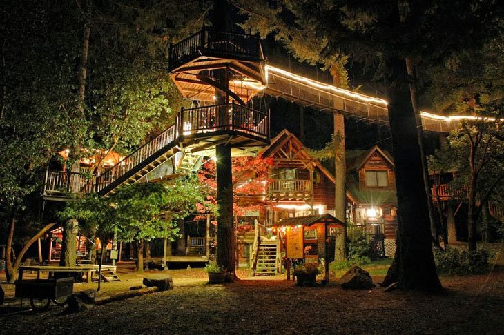Clean house in Forest (15)