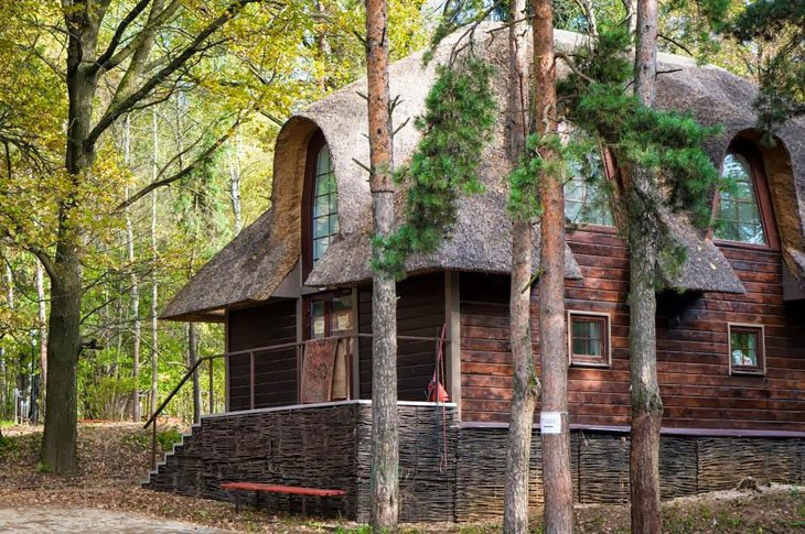 Clean house in Forest (7)