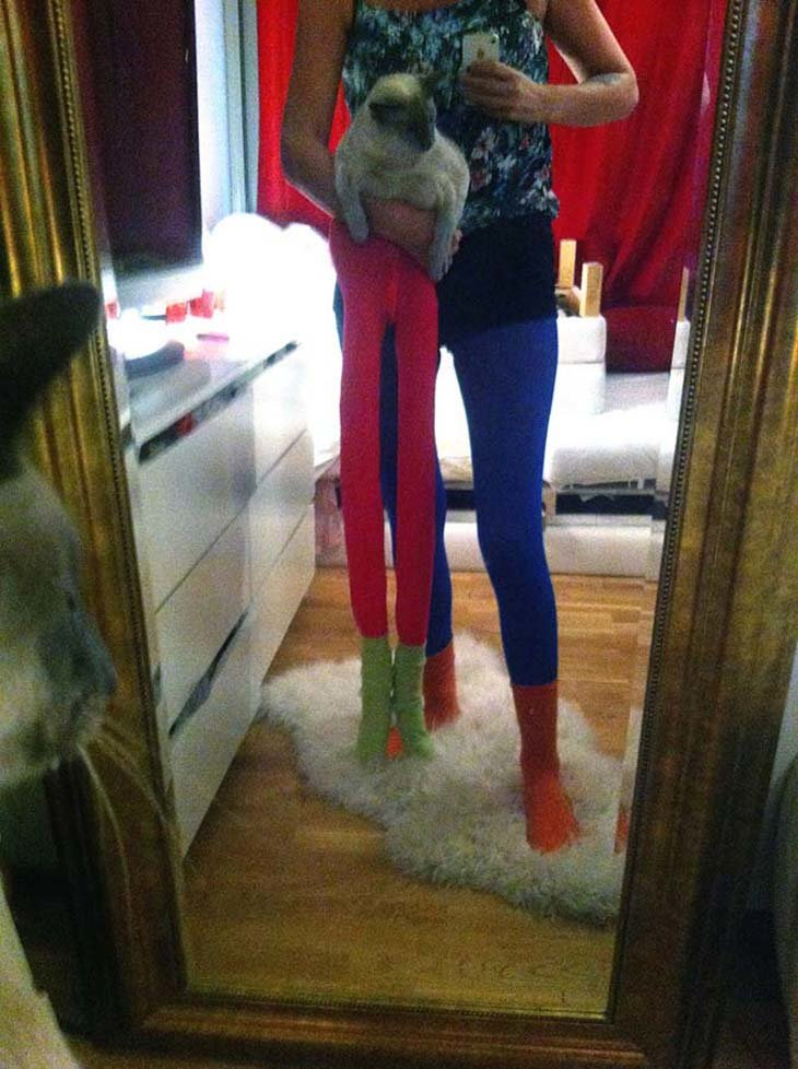 Cats wearing tights are way funnier than dogs wearing tights (12)