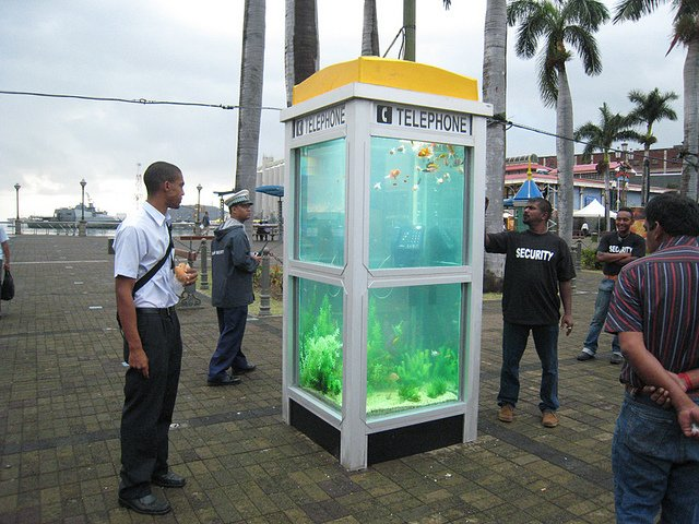 Phone Booths Converted into Outdoor Fish Aquariums  (6)
