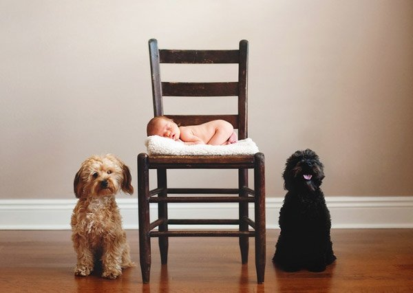 new born baby photography  (38)