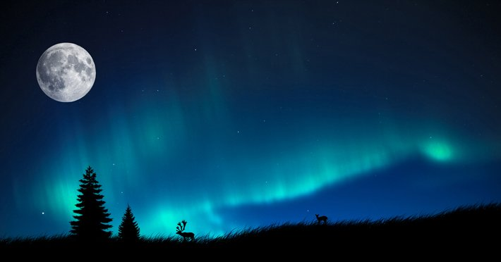 Auroras – Light of the night  (10)