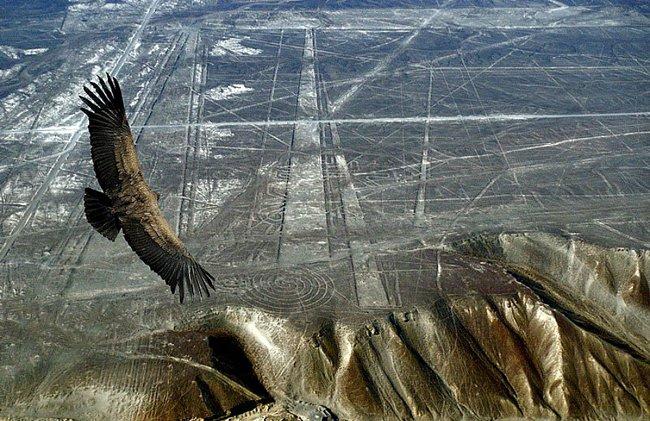 Nazca lines aliens - Spiral