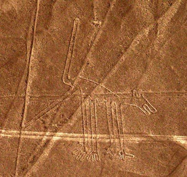 Nazca lines aliens - Dog