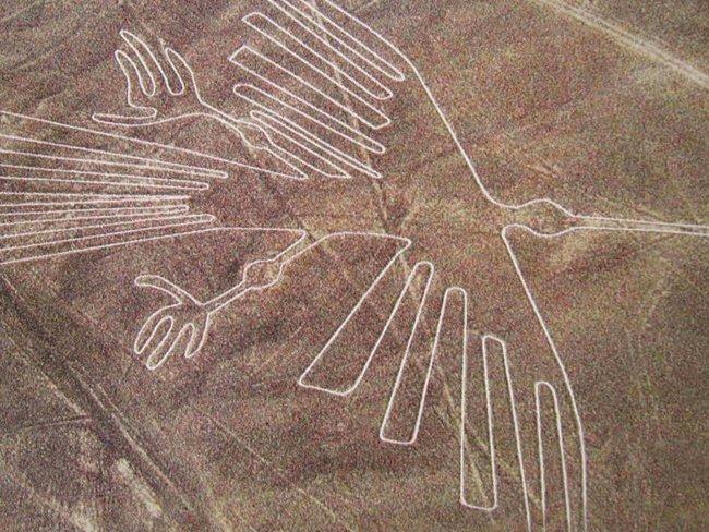 nazca lines aliens - Condor