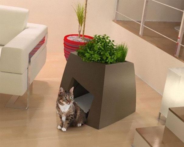 17.1 Fabulous pet Furniture Ideas