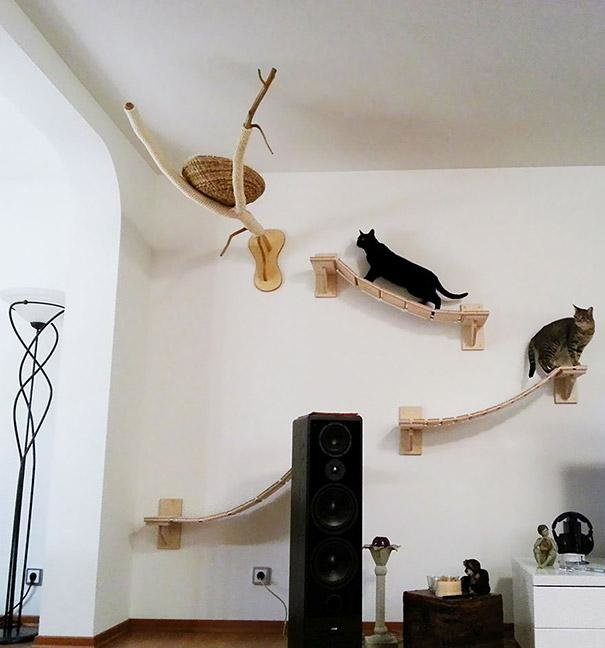 21.1 Fabulous pet Furniture Ideas