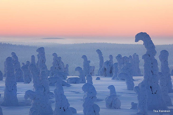 10 fascinating photo from Finland (5)