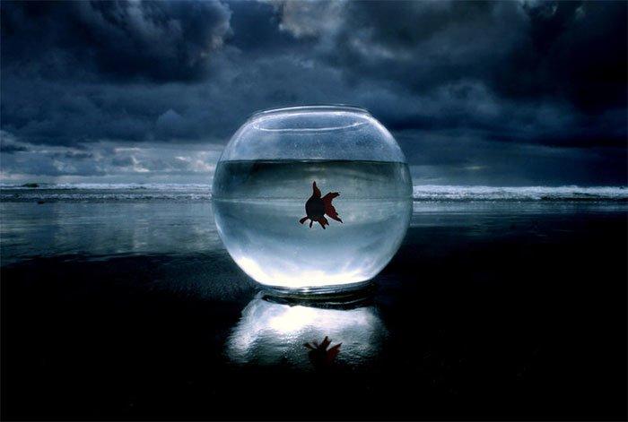 conceptual photography ideas (21)