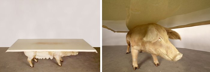 bizarre pieces of furniture that look like animals (16)