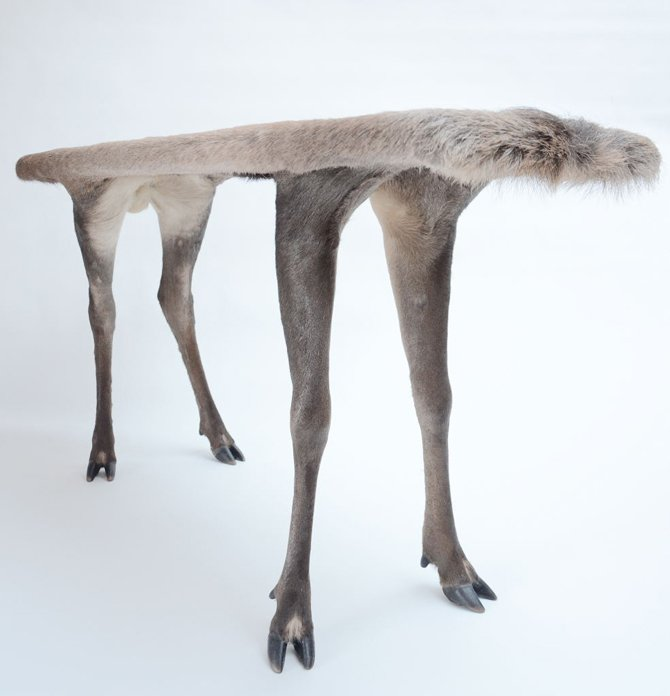 bizarre pieces of furniture that look like animals (7)