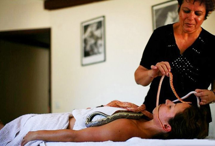 Massage By Snakes  Treatment (16)