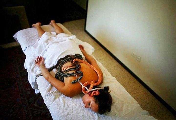 Massage By Snakes  Treatment (11)