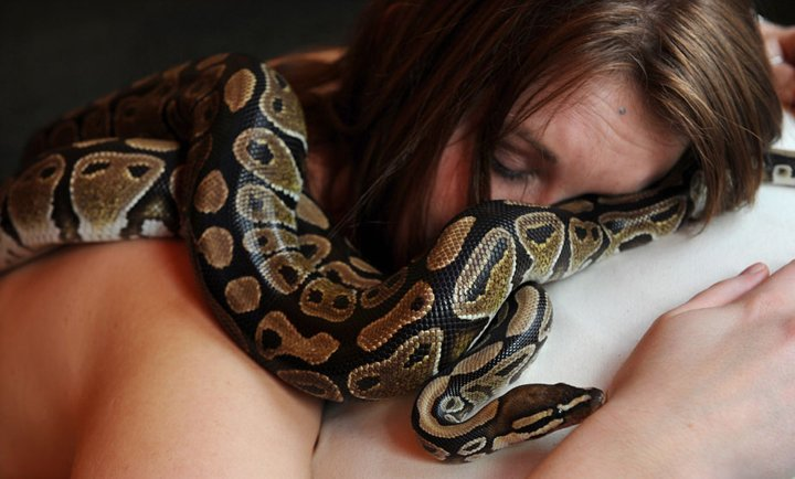 Massage By Snakes  Treatment (7)