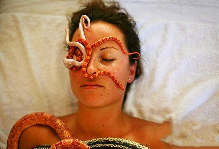 Massage By Snakes  Treatment (4)