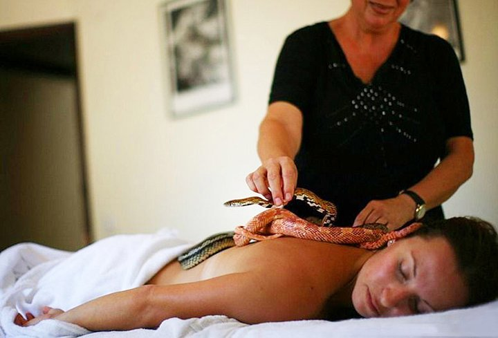 Massage By Snakes  Treatment (2)